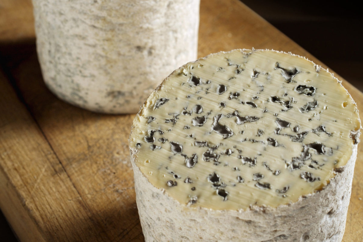 Fourme d'Ambert, fromage d'Auvergne