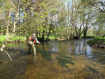 Découvert accompagnée de la pêche avec Thierry Millot, Vallée de l'Ance