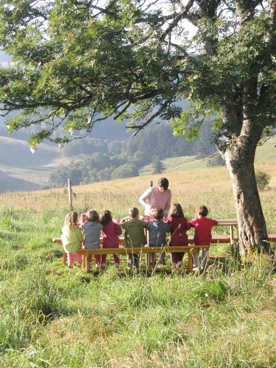 Histoire sous l'arbre  – Balade enfant