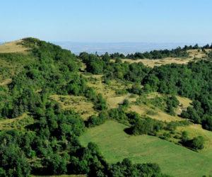 Puy Saint-Romain