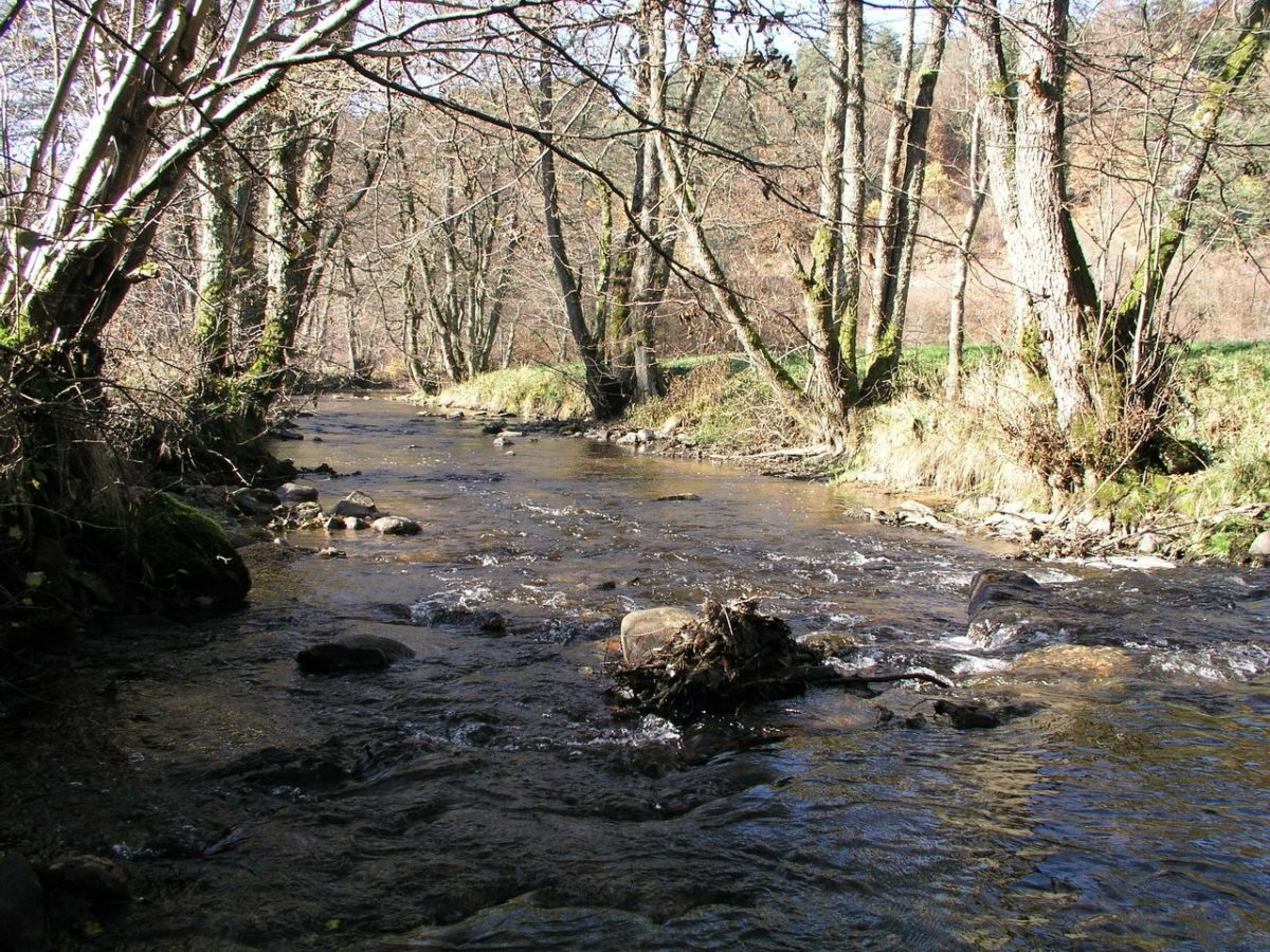 rivière senouire