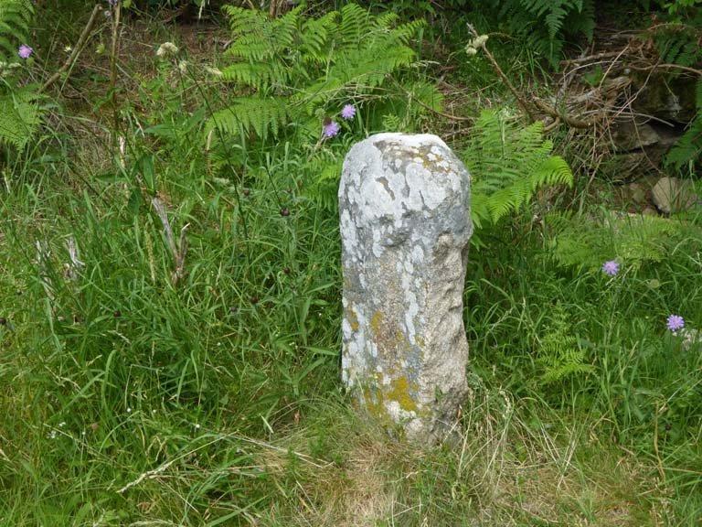 pierre des moines