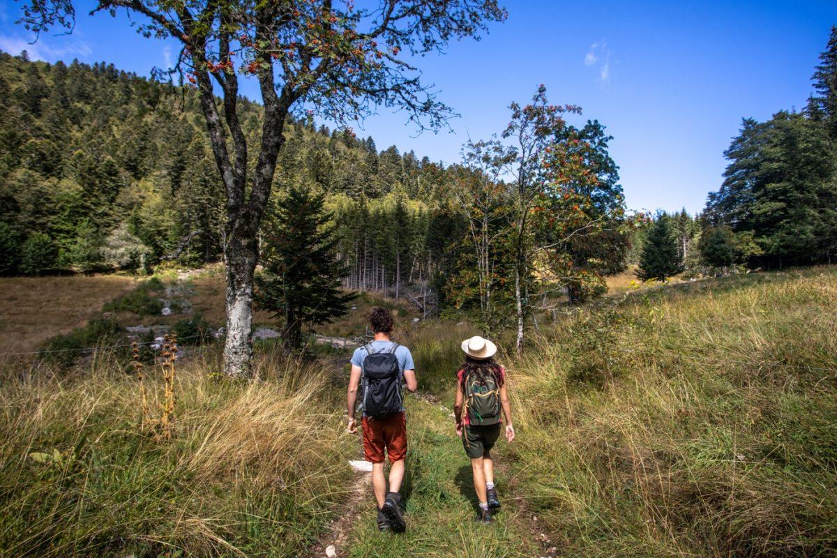 Séjour randonnée pédestre en Auvergne d'Ambert à La Chaise-Dieu