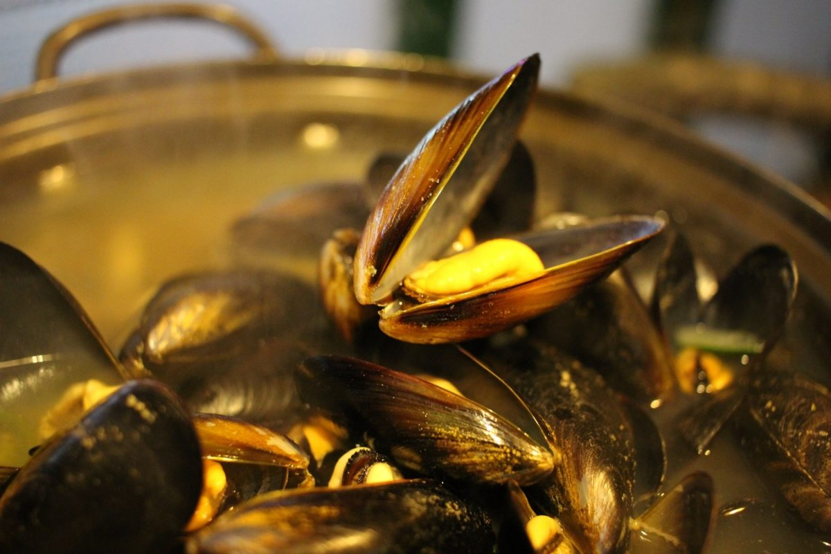 EVE_MoulesFrites