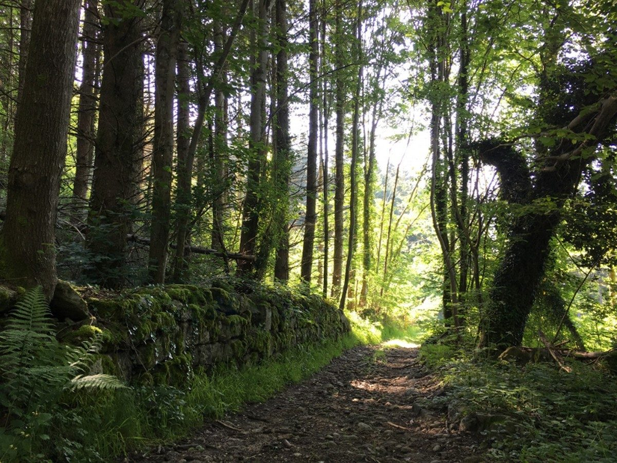 Espace Trail 1